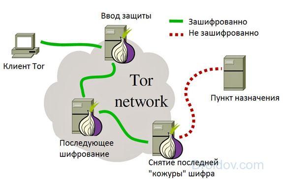 Структура работы Tor