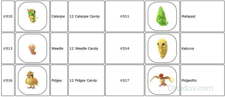 Эволюция за 12 конфет